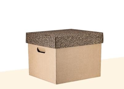 Κουτί Αδρανούς Αρχείου - Ιωνία - Μικρό