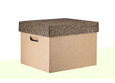 Κουτί Αδρανούς Αρχείου - Ιωνία - Μεγάλο