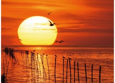 Παζλ Μαγευτικό Ηλιοβασίλεμα (500 Κομμάτια)