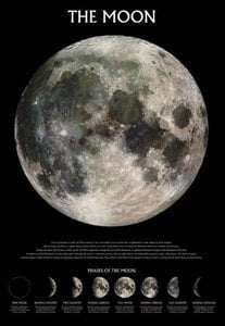 The Moon Phases Poster