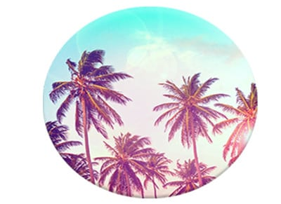 PopSockets - Palm Trees