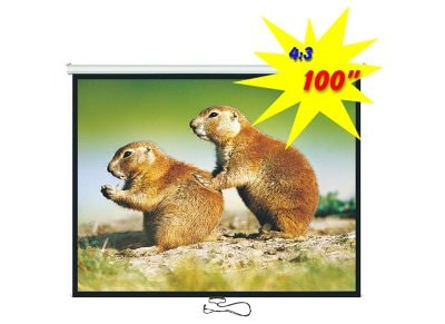 "Brateck Οθόνη Προβολής 100"" PEBC100"