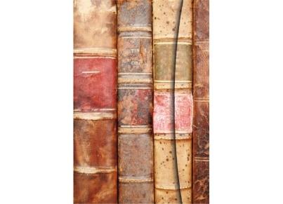 Σημειωματάριο teNeues Magneto - Antique Books (Small)